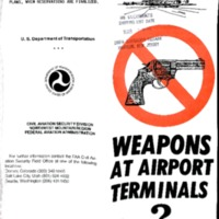 Weapons at Airport Terminals?
