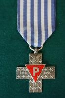 Polish Concentration Camp Survivor Medal