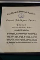 Citation for Distinguished Service